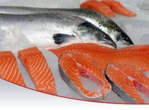 salmon_omega3