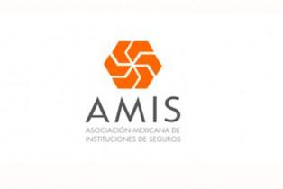 AMIS Asoc. Mexicana de Instituciones de Seguros
