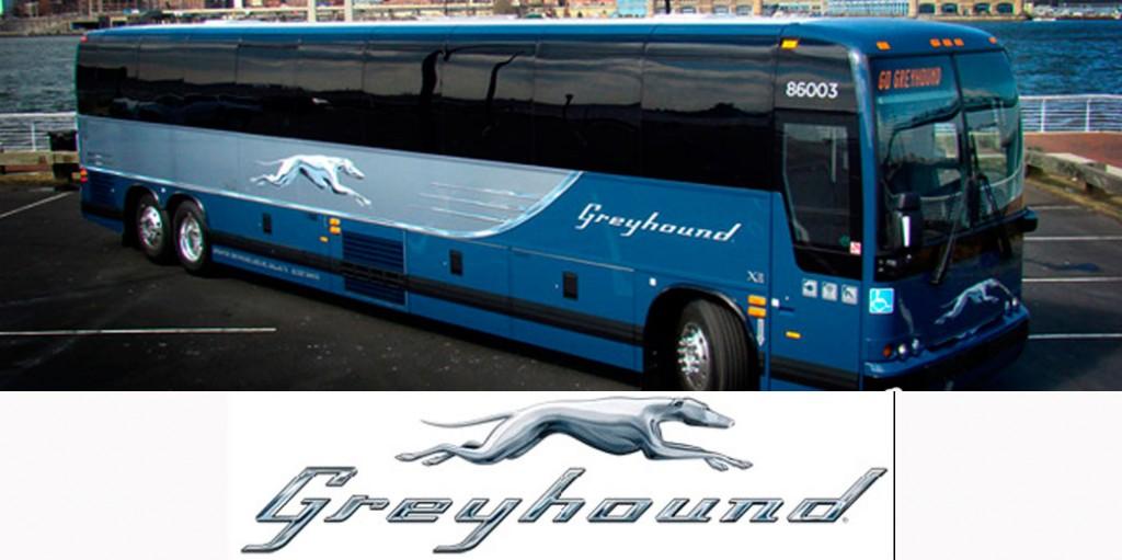 multi-greyground