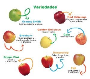 manzana interna 3