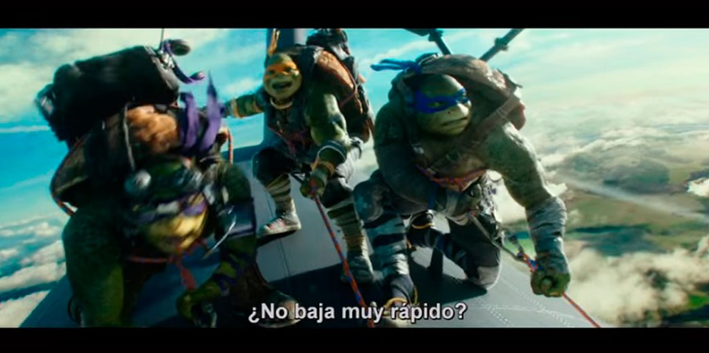 multi-tortugas