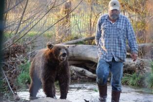 Animal Planet acompaña a dos osos en cautiverio que regresan a su hábitat natural