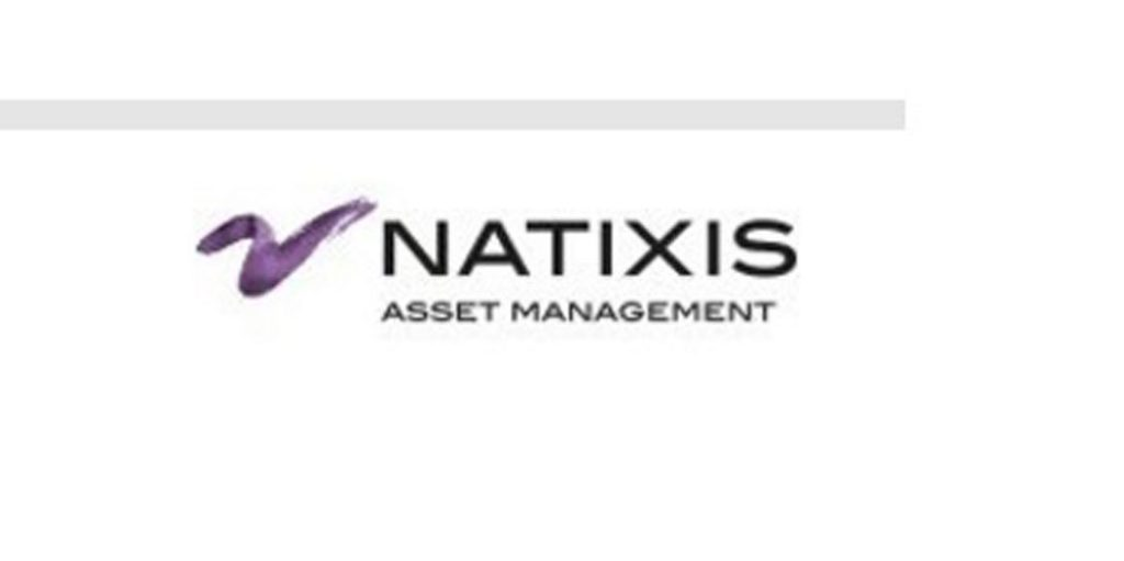 multi-natixis
