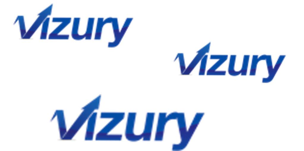 multi-vizury