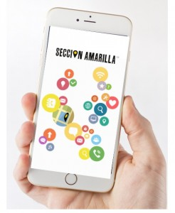 interna seccion amarilla