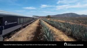 interna tequila